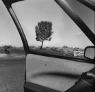 lee friedlander Oregon 1992