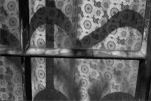 De la serie Jardín Interior. 1996