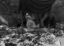 trampa_puesta_1934