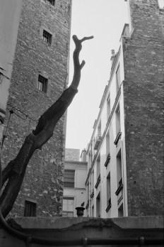 París 1974 Henri Cartier-Bresson