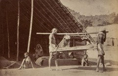 William Hooper Madras India 1876-1878