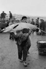 1964 Fish Market, Galata, Istanbul Henri Cartier-Bresson