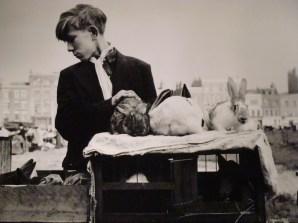 Israëlis Bidermanas dit Izis ~ Vendeur de lapins, 1952 [Whitechapel London]