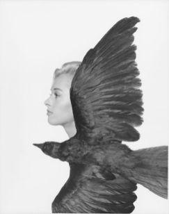 1981-3477