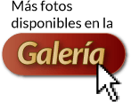 galeria_point2