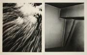 Daido Moriyama, Fragments_296