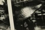 Daido Moriyama, light and shadow_62