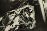 Daido Moriyama, light and shadow_83