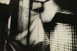 Daido Moriyama, light and shadow_90