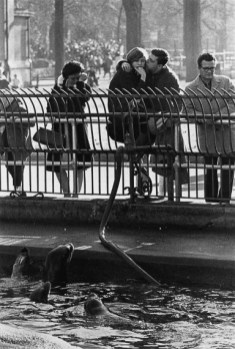 Warri_Winogrand_Central Park Zoo, New York, ca. 1963_zoo_19