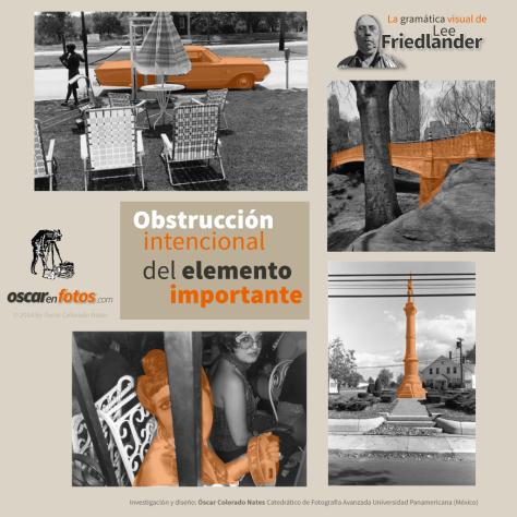 obstruccion_intencional_lee_friedlander