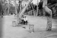 Área de picnic. Glendale, California.