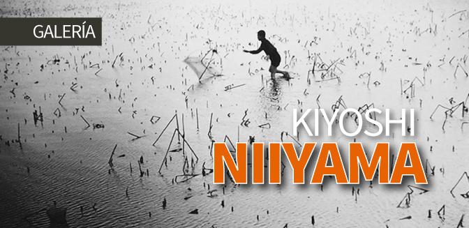 Kiyoshi Niiyama: Galería