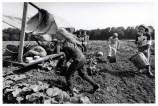 CANADA. Ontario. 1995. Haldimard-Norfolk County. Mennonites.