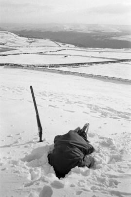 GB. England. West Yorkshire. Hebden Bridge. The gamekeeper prepares to send fox terriers down a lair. 1975.