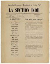 section_dor_1