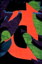 Ernst_Haas_colorAbstract09