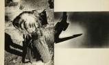 A hunter, Daido Moriyama_312