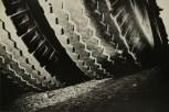 Daido Moriyama, light and shadow_91