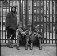 New York, New York. Three boys who live in the Harlem area. 1943