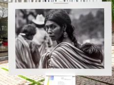 Expo-diversidad-pueblos-indigenas-UP-2