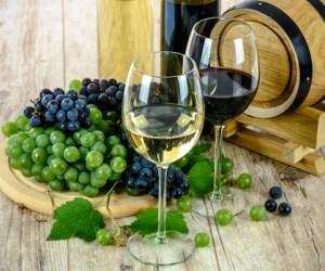Wine 101 Class: Feb 21, 2020