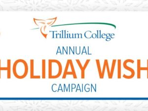 holiday_wish_campaign