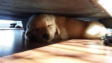 Comfy in a tight spot