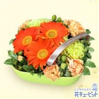 オレンジガーベラのアレンジメント【3,240円】