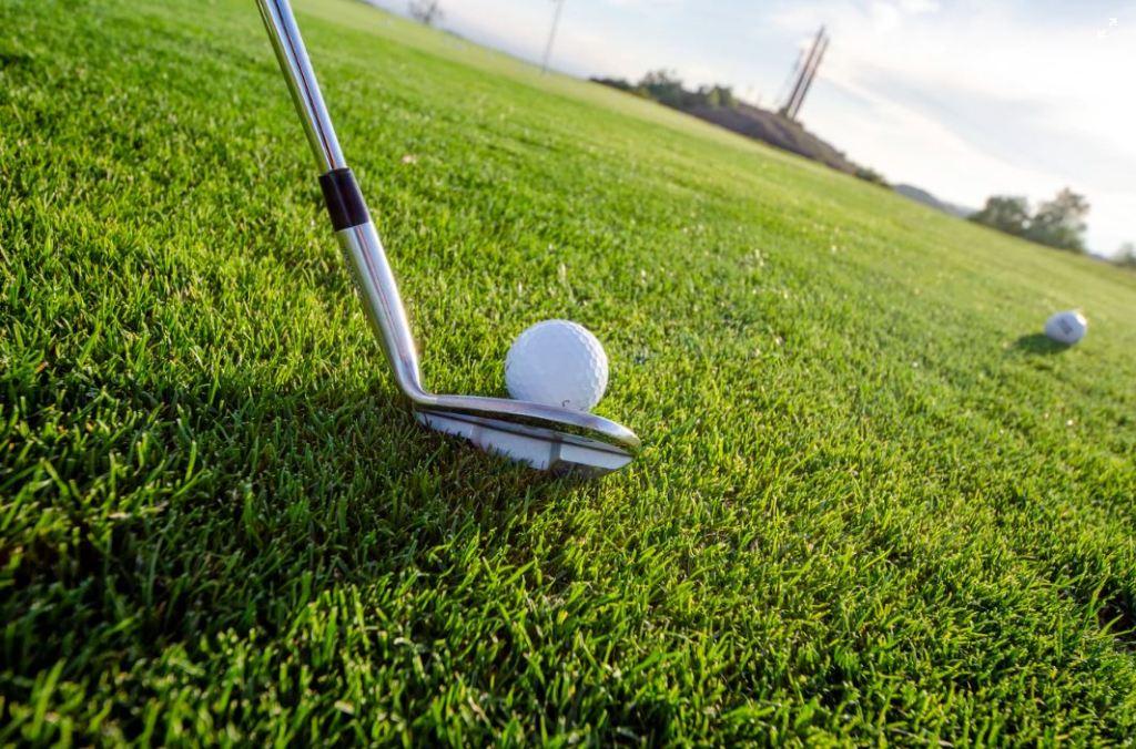 MBTI 유형별 ESTJ 계획적이면서 목적의식이 분명한 현실주의자. 소수와의 관계에서 빛을 발해 치밀함이 필요한 골프와 잘어울린다