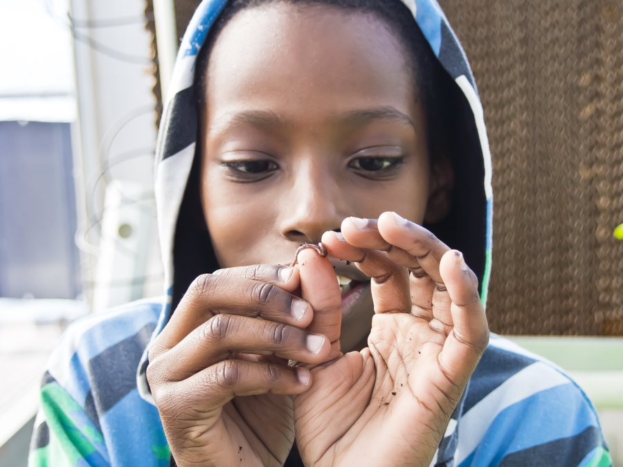 SHEFATIAH EPROTT, 11, plays with a worm from a nearby compost bin inside the Science Barge's greenhouse on Sunday.