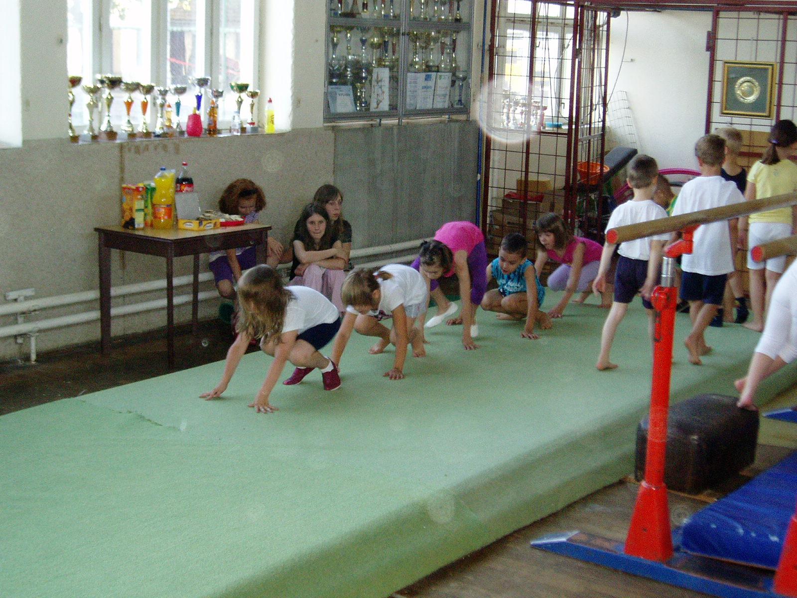 """Gimnastičko društvo """"Hrvatski sokol"""" Valpovo"""