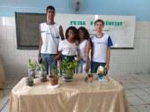 escola (4)
