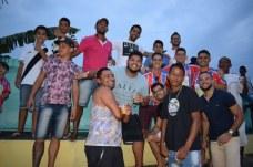 paubrasil (13)