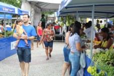 feira-agricultura-familiar-txf (42)