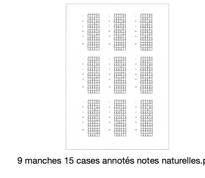 9 manches 15 cases annotés notes naturelles