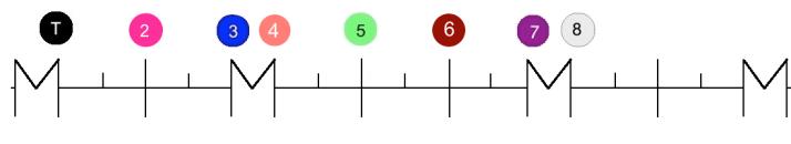 règle Mode ionien degrés