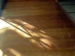 紫外線による劣化