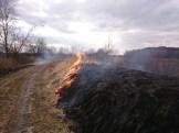 Babsk-pożar traw 28.02 (2)