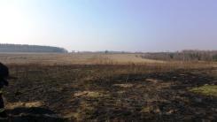 Pożar Trawy Karolew 24.03