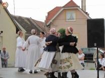 kulturna-suradnja-sa-hrvatina-u-madarskoj-175