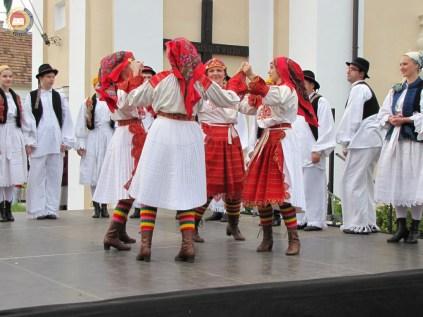 kulturna-suradnja-sa-hrvatina-u-madarskoj-242