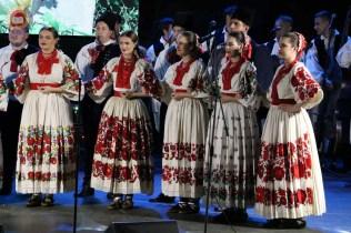 Lukovo u Novskoj, Novska 2019.32
