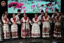 Lukovo u Novskoj, Novska 2019.37