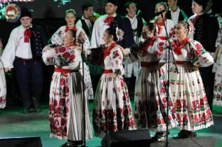 Lukovo u Novskoj, Novska 2019.59