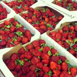 Local Strawberries Are Here!