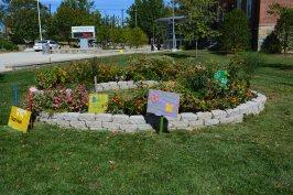 Wilson HS' school garden