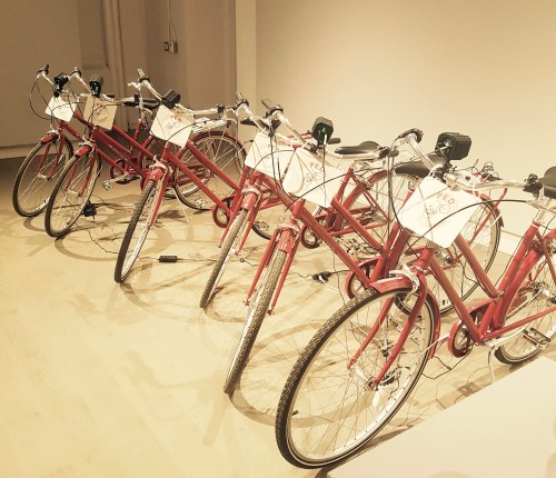 The PED Bikes