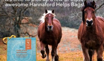 Hannaford Bag of the Month Program Update
