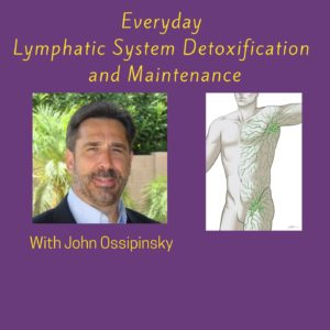 Everyday Lymphatic System Detoxification